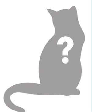 NellyCat. Anonymous of Nottingham